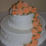 19 Summer Orange Roses W76